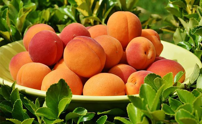 nutritional-information-of-peaches
