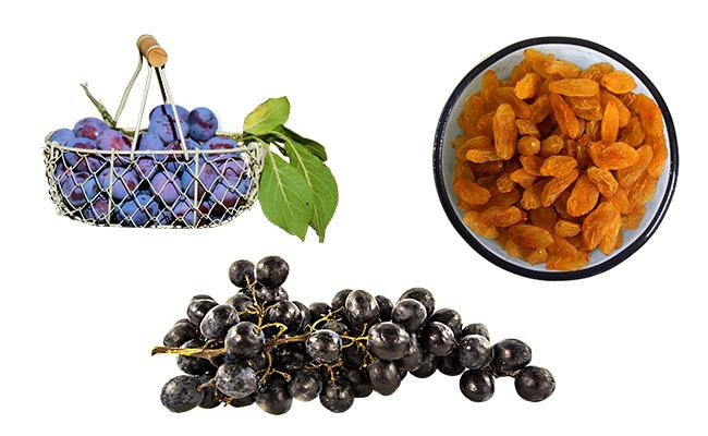 are-plums-as-toxic-as-raisins-and-grapes-for-dogs