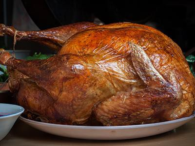 how-to-feed-turkey-safely