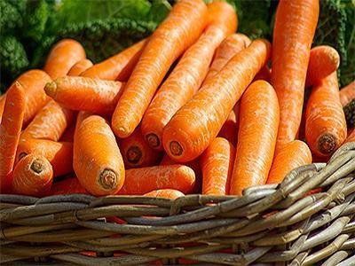 cats-eat-carrots