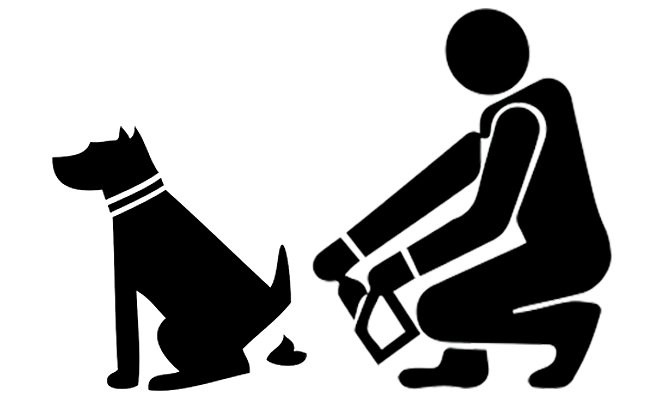 clean-your-dog-scoop-the-poop-safely
