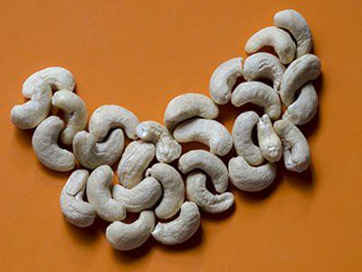 dogs-eat-cashews