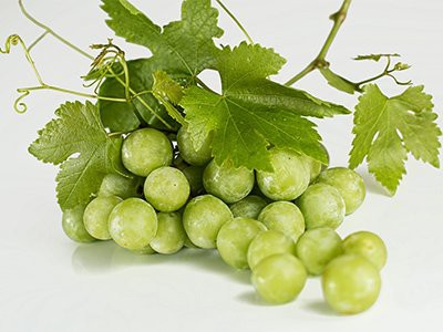 dogs-eat-grapes-or-raisins