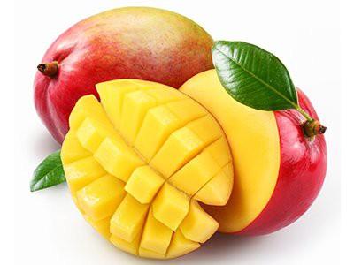 dogs-eat-mango
