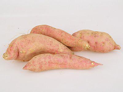 dogs-eat-sweet-potatoes