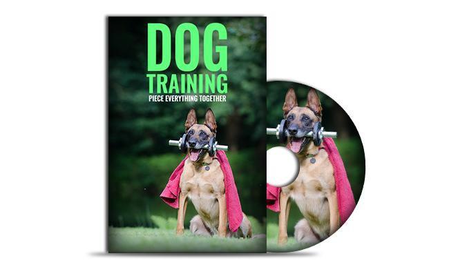 dog-training-videos-and-books Dog Training Equipment