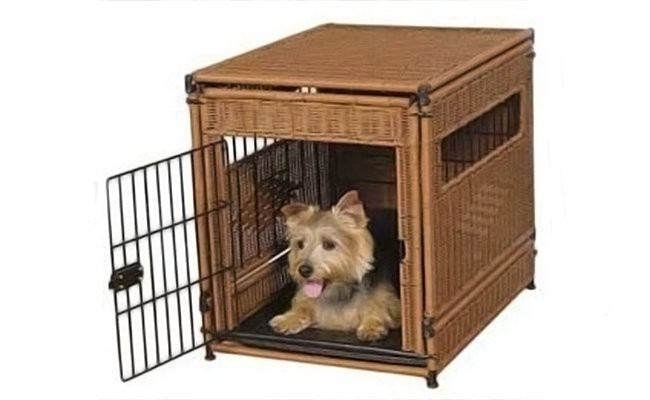 crate-for-your-pet - Pets Travel