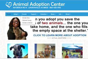 animal-adoption-center