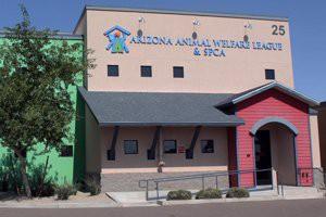 arizona-animal-welfare-league-arizona