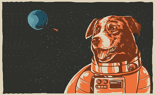 astronomy-dog-names
