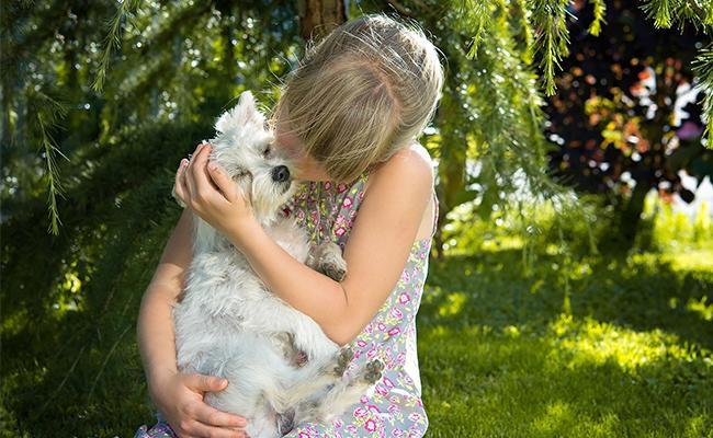 benefits-of-having-a-pet