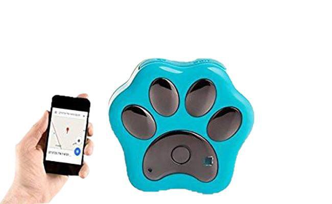 paw-prints-id-qr-smart-gps-tracker - Smart Pet Trackers