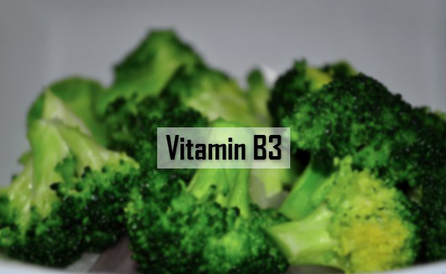 vitamin-b3-vitamins-for-dogs