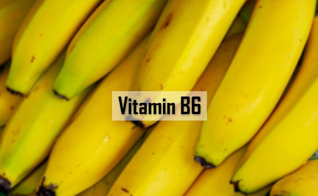 vitamin-b6-vitamins-for-dogs