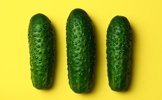 cucumber-terror