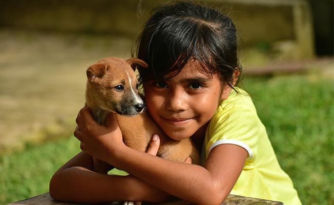 why-do-dogs-like-to-be-hugged