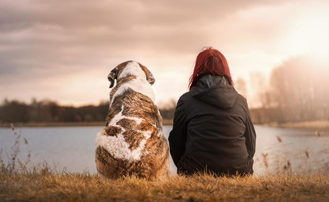 a-friend-for-life - Why Pets Are Good For You?